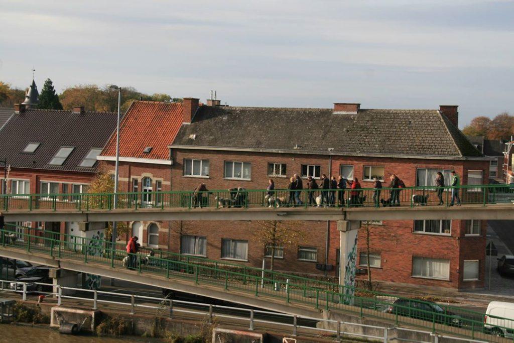 vaste brug te Oudenaarde